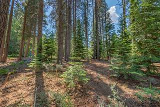 Listing Image 11 for 10455 E Alder Creek Road, Truckee, CA 96161