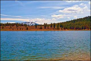 Listing Image 13 for 10455 E Alder Creek Road, Truckee, CA 96161