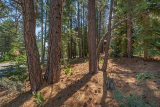 Listing Image 4 for 10455 E Alder Creek Road, Truckee, CA 96161
