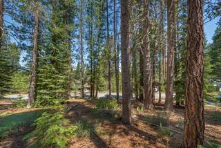 Listing Image 9 for 10455 E Alder Creek Road, Truckee, CA 96161