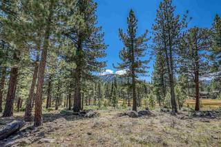 Listing Image 12 for 560 Stewart McKay, Truckee, CA 96161