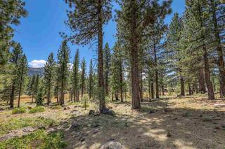 Listing Image 16 for 560 Stewart McKay, Truckee, CA 96161