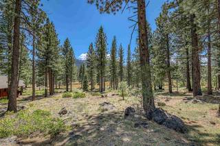 Listing Image 17 for 560 Stewart McKay, Truckee, CA 96161