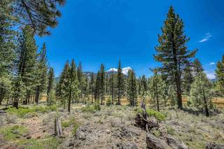 Listing Image 5 for 560 Stewart McKay, Truckee, CA 96161