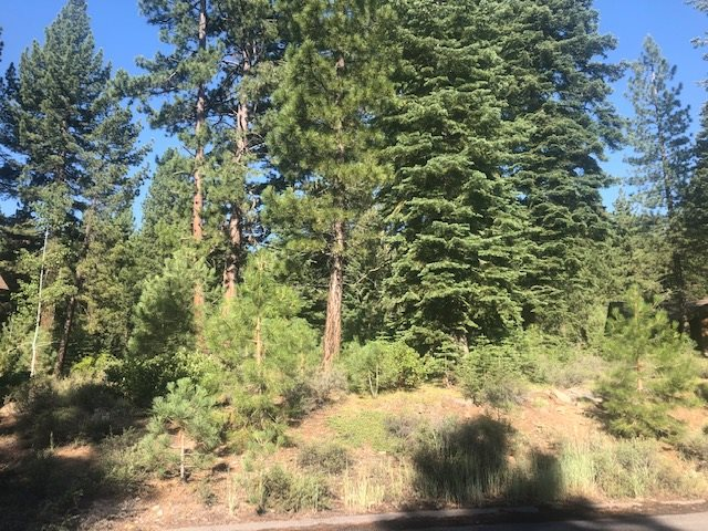 Image for 11106 China Camp Road, Truckee, CA 96161