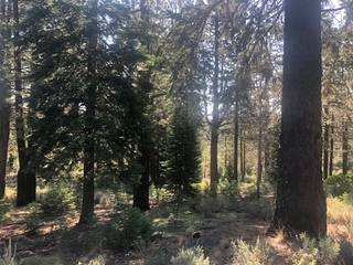 Listing Image 4 for 11106 China Camp Road, Truckee, CA 96161