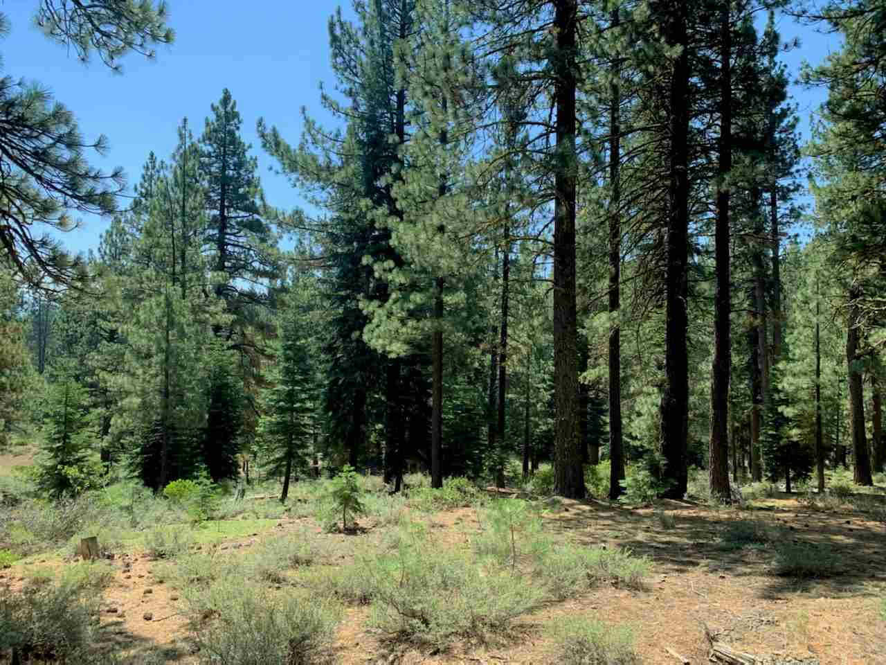 Image for 12721 Granite Drive, Truckee, CA 96161