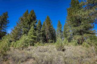 Listing Image 11 for 11312 China Camp Road, Truckee, CA 96161