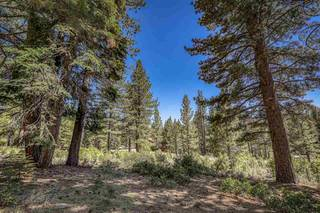 Listing Image 15 for 11312 China Camp Road, Truckee, CA 96161