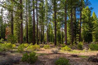 Listing Image 4 for 8507 Wellscroft Court, Truckee, CA 96161