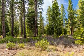 Listing Image 5 for 8507 Wellscroft Court, Truckee, CA 96161