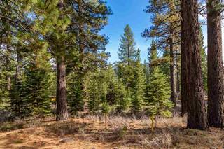 Listing Image 6 for 8507 Wellscroft Court, Truckee, CA 96161