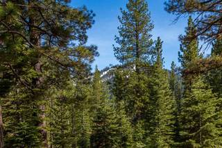Listing Image 7 for 8507 Wellscroft Court, Truckee, CA 96161