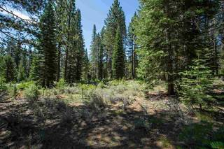 Listing Image 3 for 11790 Bottcher Loop, Truckee, CA 96161