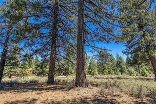 Listing Image 8 for 12570 Caleb Drive, Truckee, CA 96161