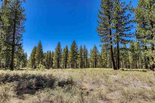Listing Image 9 for 12570 Caleb Drive, Truckee, CA 96161