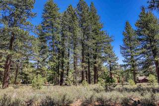 Listing Image 11 for 12526 Caleb Drive, Truckee, CA 96161