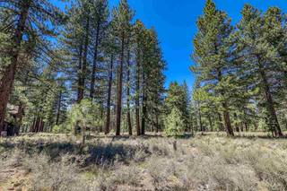 Listing Image 13 for 12526 Caleb Drive, Truckee, CA 96161