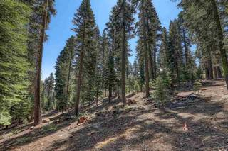 Listing Image 3 for 12360 Muhlebach Way, Truckee, CA 96161