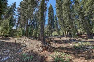 Listing Image 4 for 12360 Muhlebach Way, Truckee, CA 96161