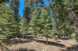 Listing Image 9 for 12360 Muhlebach Way, Truckee, CA 96161