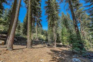 Listing Image 10 for 12360 Muhlebach Way, Truckee, CA 96161
