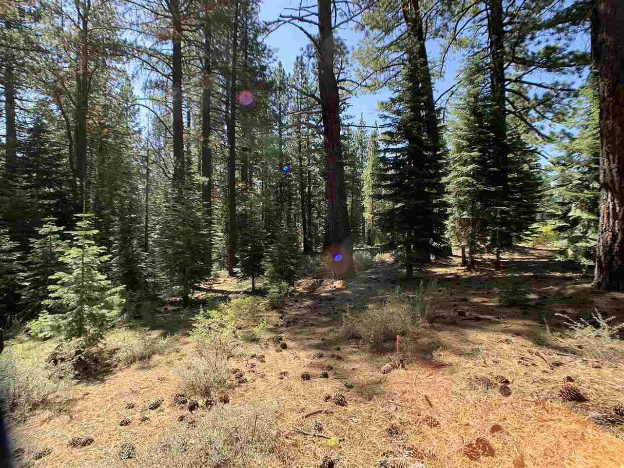 Image for 11781 Saddleback Drive, Truckee, CA 96161