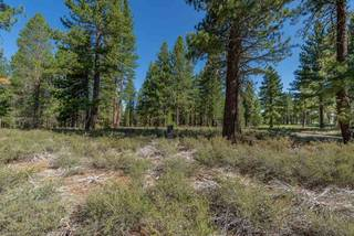 Listing Image 4 for 12652 Caleb Circle, Truckee, CA 96161