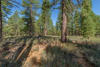 Listing Image 5 for 12652 Caleb Circle, Truckee, CA 96161