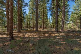 Listing Image 11 for 12385 Caleb Drive, Truckee, CA 96161