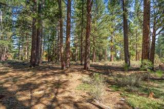 Listing Image 13 for 12385 Caleb Drive, Truckee, CA 96161