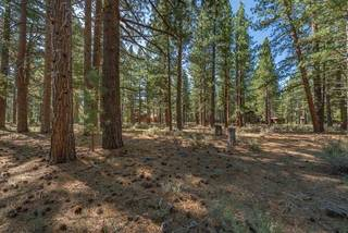 Listing Image 14 for 12385 Caleb Drive, Truckee, CA 96161