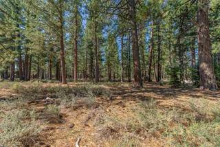 Listing Image 6 for 12385 Caleb Drive, Truckee, CA 96161