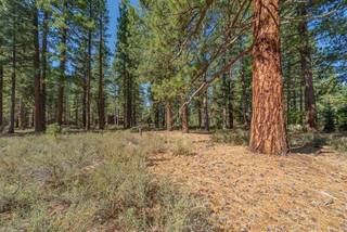 Listing Image 8 for 12385 Caleb Drive, Truckee, CA 96161