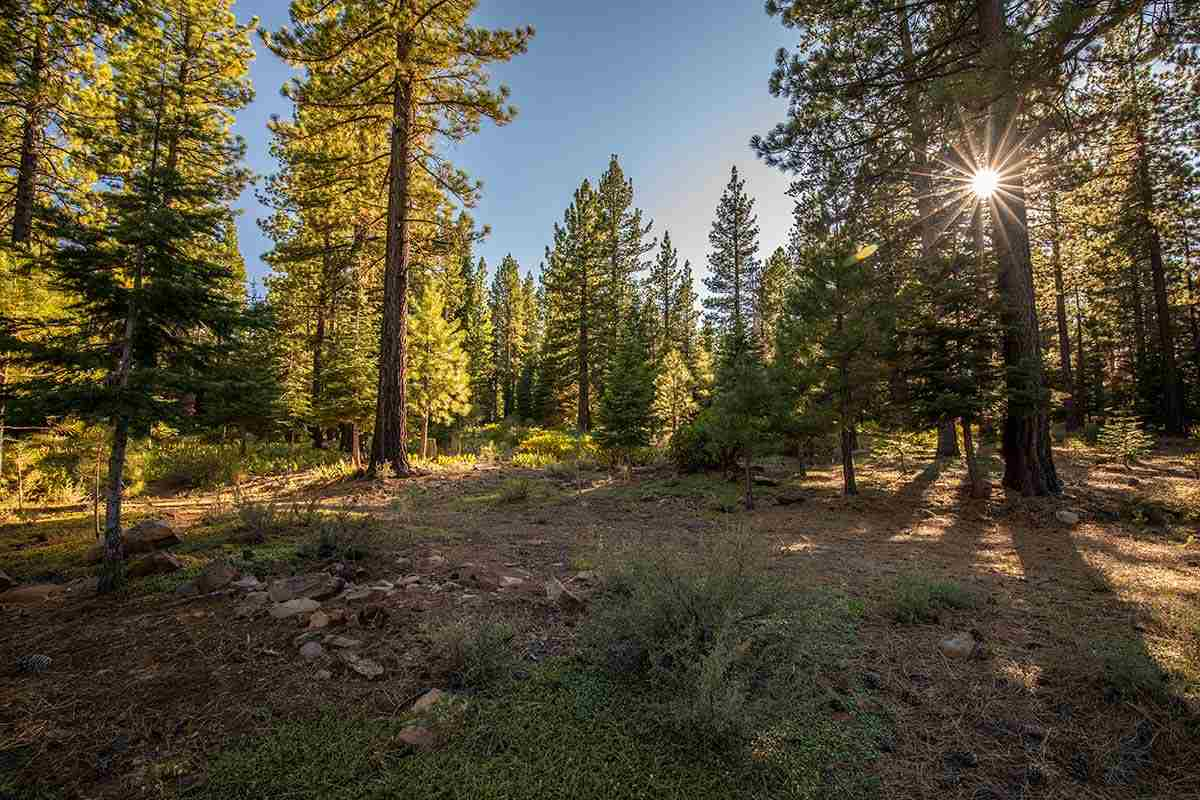 Image for 12228 Pete Alvertson Drive, Truckee, CA 96161