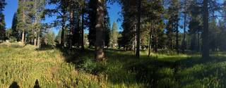 Listing Image 14 for 50001 Donner Pass Road, Soda Springs, CA 95728