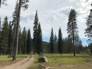 Listing Image 4 for 50001 Donner Pass Road, Soda Springs, CA 95728