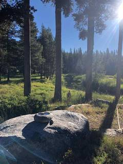 Listing Image 9 for 50001 Donner Pass Road, Soda Springs, CA 95728