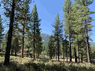 Listing Image 11 for 7740 Lahontan Drive, Truckee, CA 96161-0000