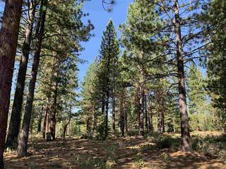 Listing Image 12 for 7740 Lahontan Drive, Truckee, CA 96161-0000