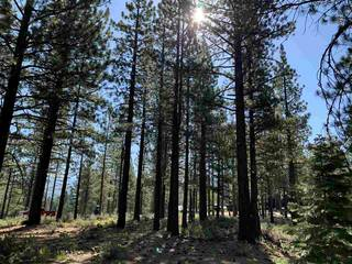 Listing Image 13 for 7740 Lahontan Drive, Truckee, CA 96161-0000