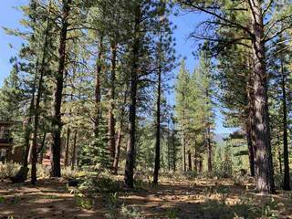 Listing Image 14 for 7740 Lahontan Drive, Truckee, CA 96161-0000