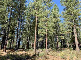 Listing Image 6 for 7740 Lahontan Drive, Truckee, CA 96161-0000
