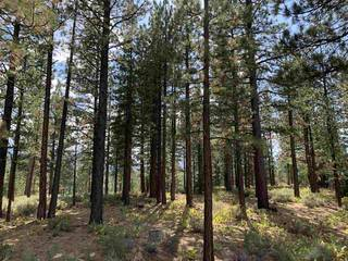 Listing Image 8 for 7740 Lahontan Drive, Truckee, CA 96161-0000