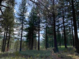 Listing Image 9 for 7740 Lahontan Drive, Truckee, CA 96161-0000