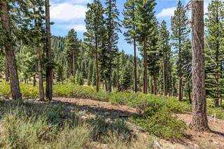 Listing Image 6 for 19070 Glades Place, Truckee, CA 96161