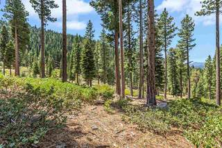 Listing Image 7 for 19070 Glades Place, Truckee, CA 96161