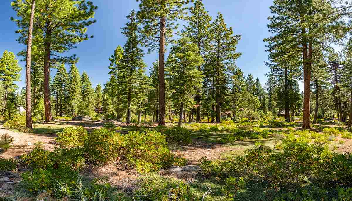 Image for 12356 Garwood Dean, Truckee, CA 96161
