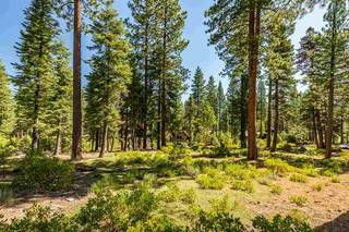 Listing Image 8 for 12356 Garwood Dean, Truckee, CA 96161