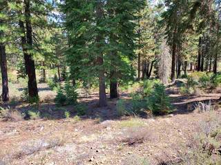 Listing Image 2 for 11101 China Camp Road, Truckee, CA 96161-0000